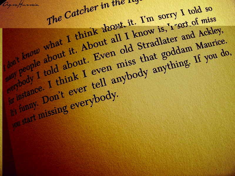 the catcher in the rye essay introductions
