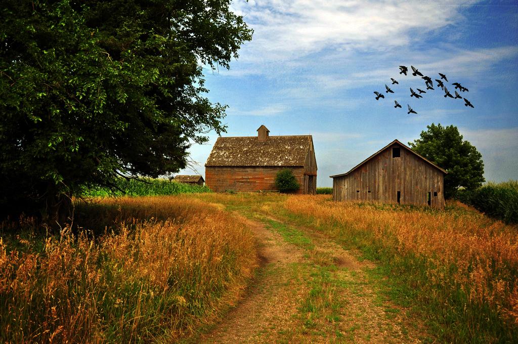 Iowa photo